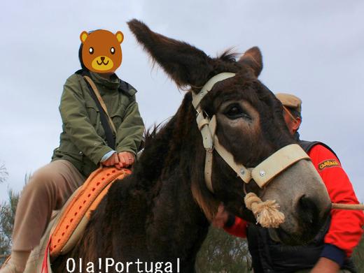 ポルトガル旅行記:ミランダ・ロバ体験乗驢馬(乗馬)