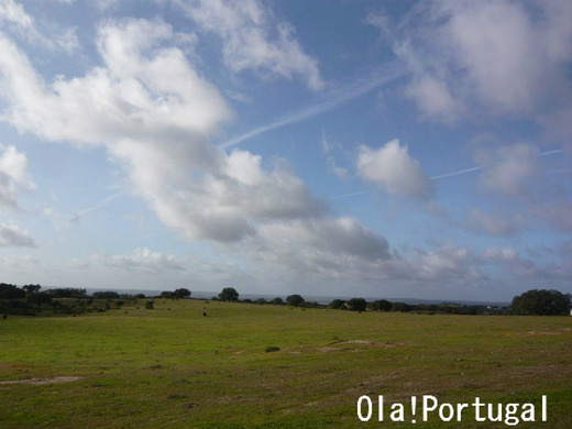 ポルトガルの巨石遺跡を訪ねる:Crato クラト