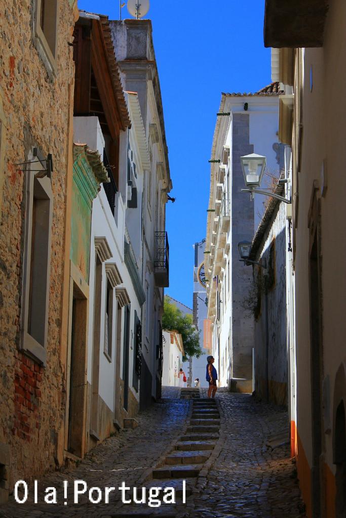 Ola! Portugal 与茂駄(よもだ)とれしゅ ~オラ!ポルトガルのブログ~                        ケニッシュ