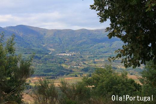 ポルトガル旅行&情報ブログ:Ola!Portugal