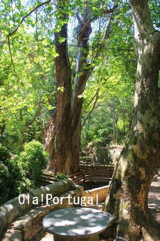 ポルトガルの高原&スパリゾート:モンシケ