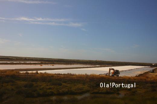 ポルトガル旅行記:タヴィラの塩田