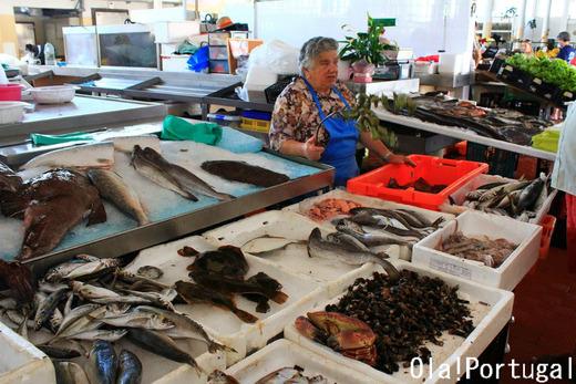 ポルトガル旅行記:魚市場に行って来た(カミーニャ)