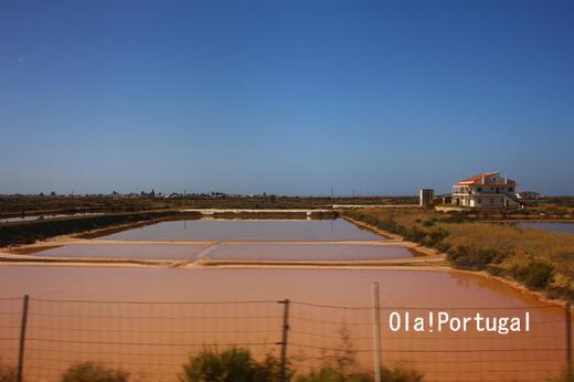 ポルトガル旅行記:Faro ファーロの塩田