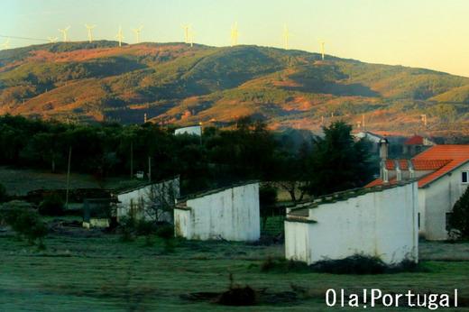 ポルトガル北部の建物:Pombais ポンバイス(鳩小屋)