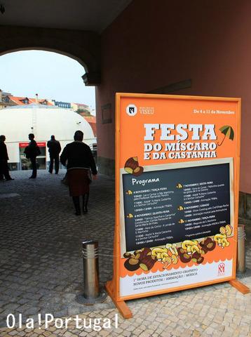 ポルトガル旅行記:栗&きのこ祭りに行って来た(ヴィゼウ)