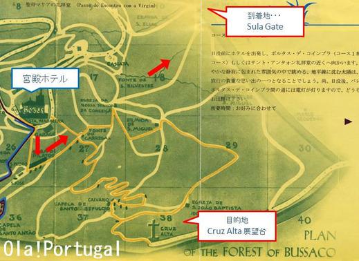 ブサコ国立公園:クルス・アルタ展望台への行き方