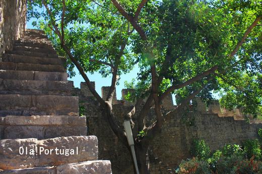 ポルトガル城跡巡りの旅:タヴィラ城