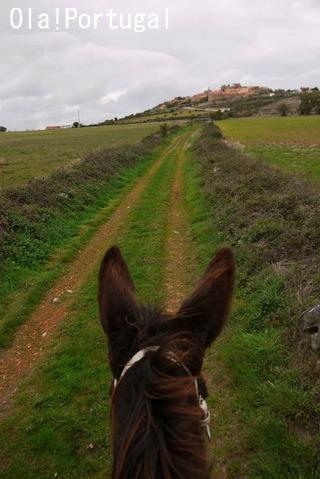 ポルトガル旅行記:カステロ・ロドリゴ
