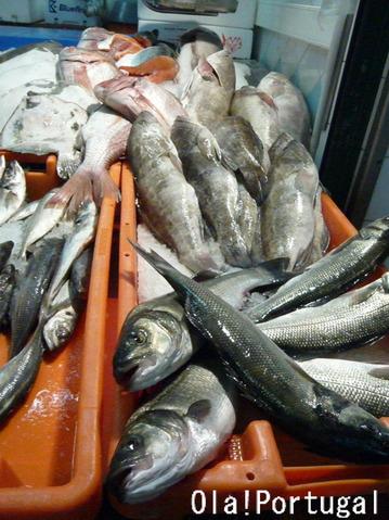 ポルトガルの魚:Robalo ロバーロ(すずき)