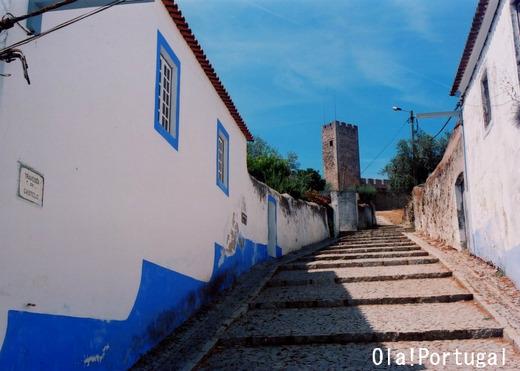 ポルトガル古城巡り:カステロ・デ・アライオロス