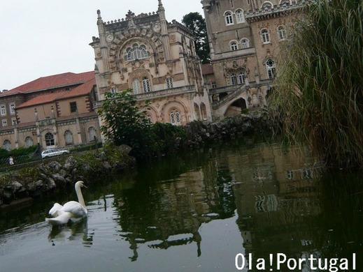 ポルトガル旅行記:ブサコ