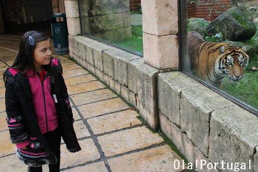 ポルトガル旅行記:リスボン動物園