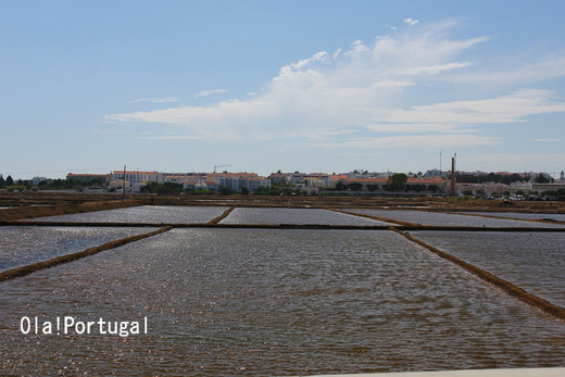 ポルトガルアルガルヴェ地方の塩田