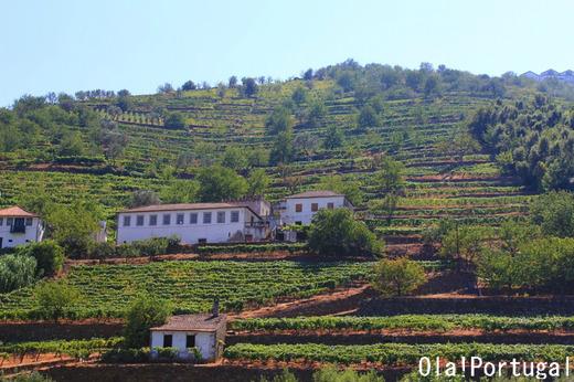 「レトロな旅時間ポルトガルへ」の著者&カメラマンのブログ
