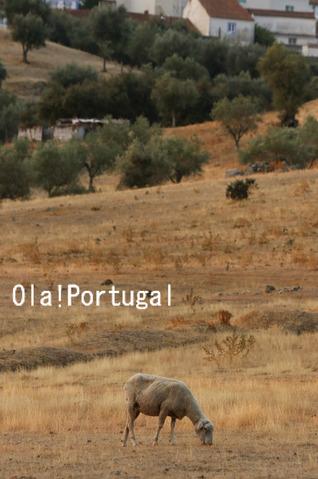 ポルトガルの牧歌的なアレンテージョ地方の風景