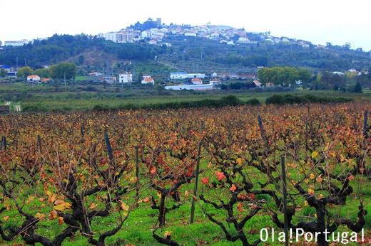 ポルトガルの歴史的村々:ベルモンテとベルモンテ城