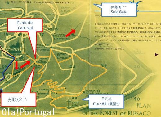 ブサコ森林公園ウォーキングコース地図(迷子に注意)