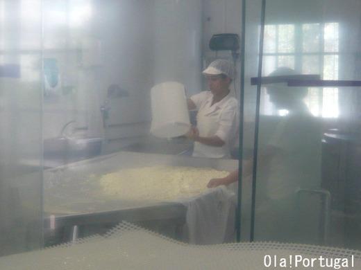 ポルトガルチーズの作り方:カード(凝乳)を濾す