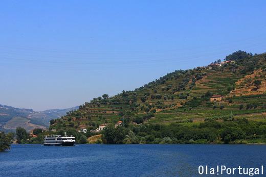 ユネスコ世界遺産の旅:ポルトガル・ドウロ川上流のワイン生産地域