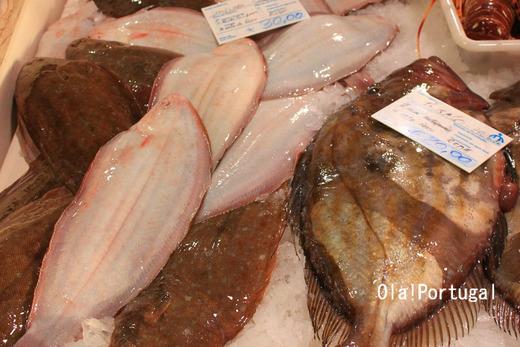 ポルトガルの魚市場に行って来た(アルガルベ地方ラゴス)