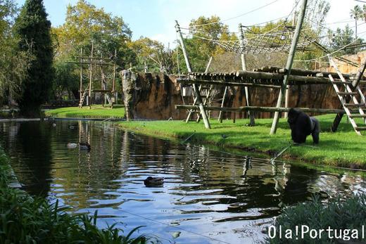 海外の動物園の様子:ポルトガル(リスボン動物園)