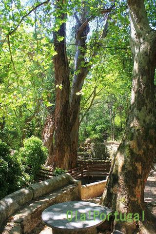 ポルトガルの高原&スパリゾート:Moncique モンシーク