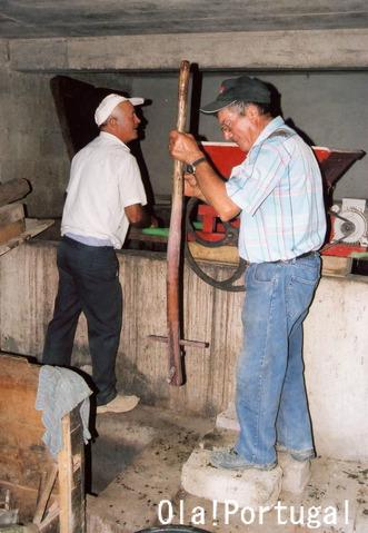ポルトガルのワイン:Dao ダオン