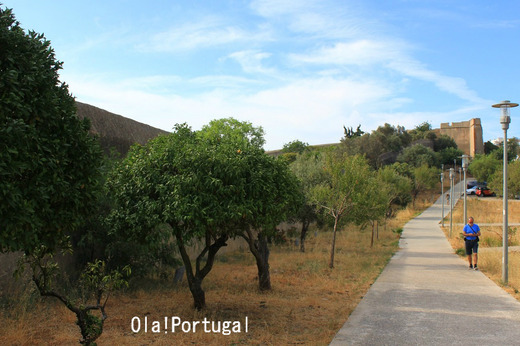 ポルトガル情報満載のブログ:Ola! Portugal