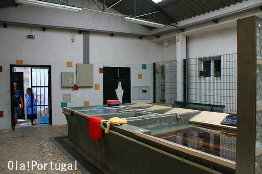 NHK「チョイ住み in リスボン」に登場のアルファマの洗濯場