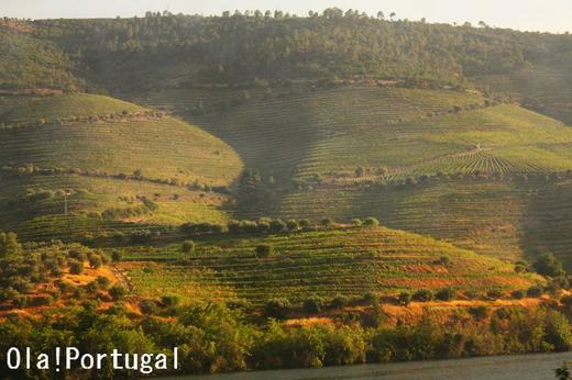 世界の車窓から:ポルトガル・ドウロ線(ピニャオン~ポルト)