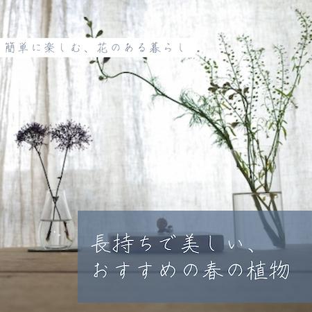 花のある暮らし春