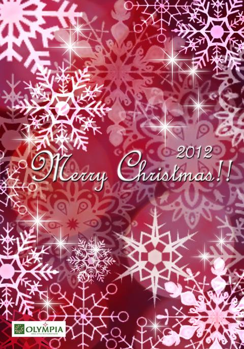 クリスマスカード2012雪ボルドーのコピー