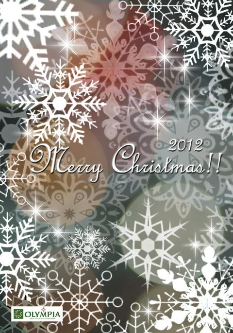 クリスマスカード2012雪 グレーのコピー