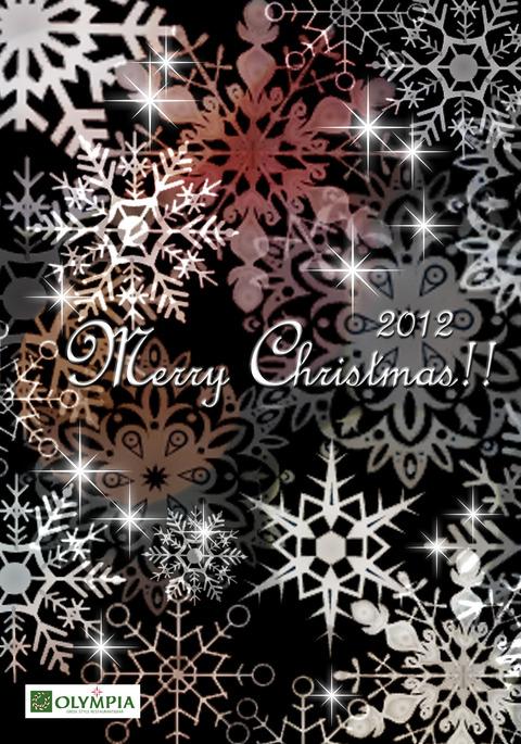クリスマスカード2012雪 kuroのコピー