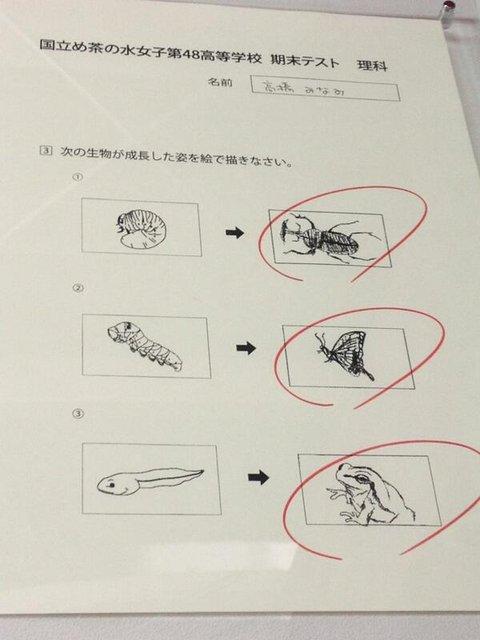 https://livedoor.blogimg.jp/omaeranews-idol/imgs/7/2/72c4a2a5.jpg