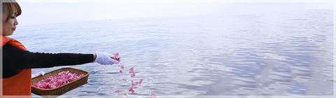 img_note_ocean
