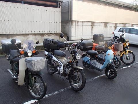 P3280448 (800x600)