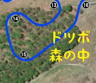 コース15森の中