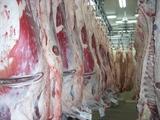 第1回近江牛枝肉販売会