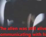 【動画】 KGBが撮影した「グレイ型宇宙人」の映像が流出し世界に衝撃・・ 会話する異様な姿も
