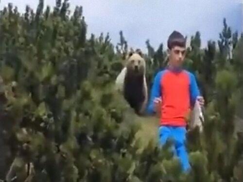 山で12歳の少年がクマに遭遇した一部始終…冷静な行動が称賛を浴びる