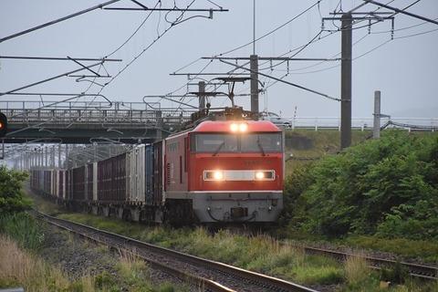 DSC_9735-1