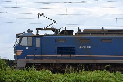 DSC_9985-1