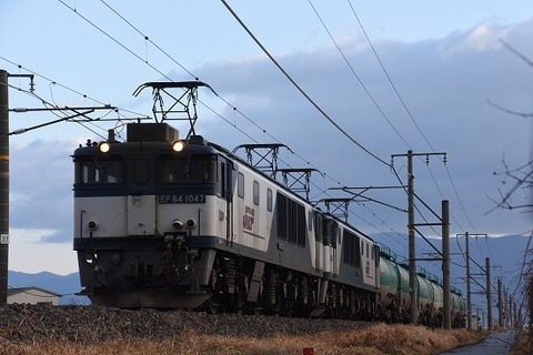 DSC_2694-1