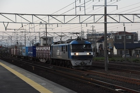 DSC_1410-1