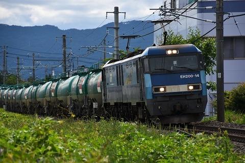 DSC_0009-1