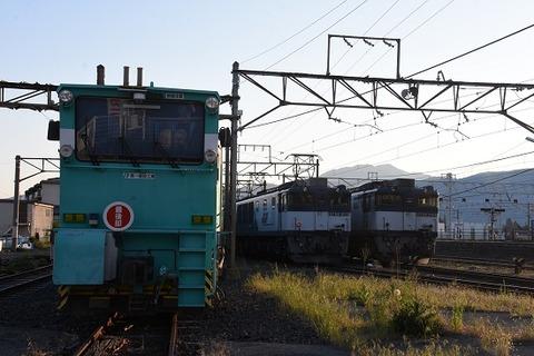 DSC_3968-1