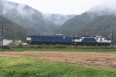 DSC_7653-1