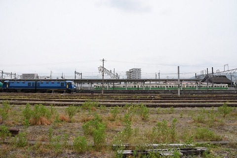DSC_5587-1
